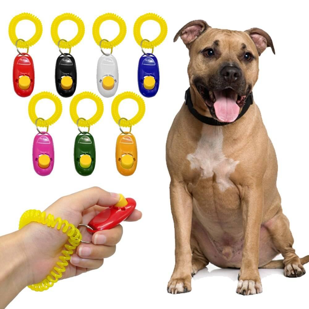 Для чего нужны кликеры для собак: использование для дрессировки питомцев