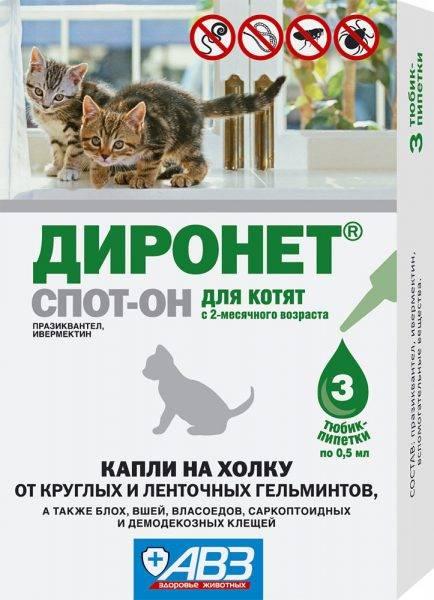 «диронет» для кошек