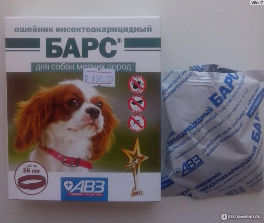 Ошейники для собак от блох и клещей: отзывы и обзор лучших