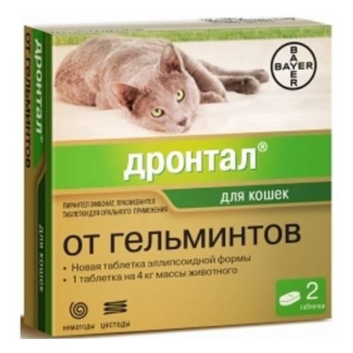 Капли и таблетки от глистов для кошек: противоглистные препараты и их побочные действия, способы лечения