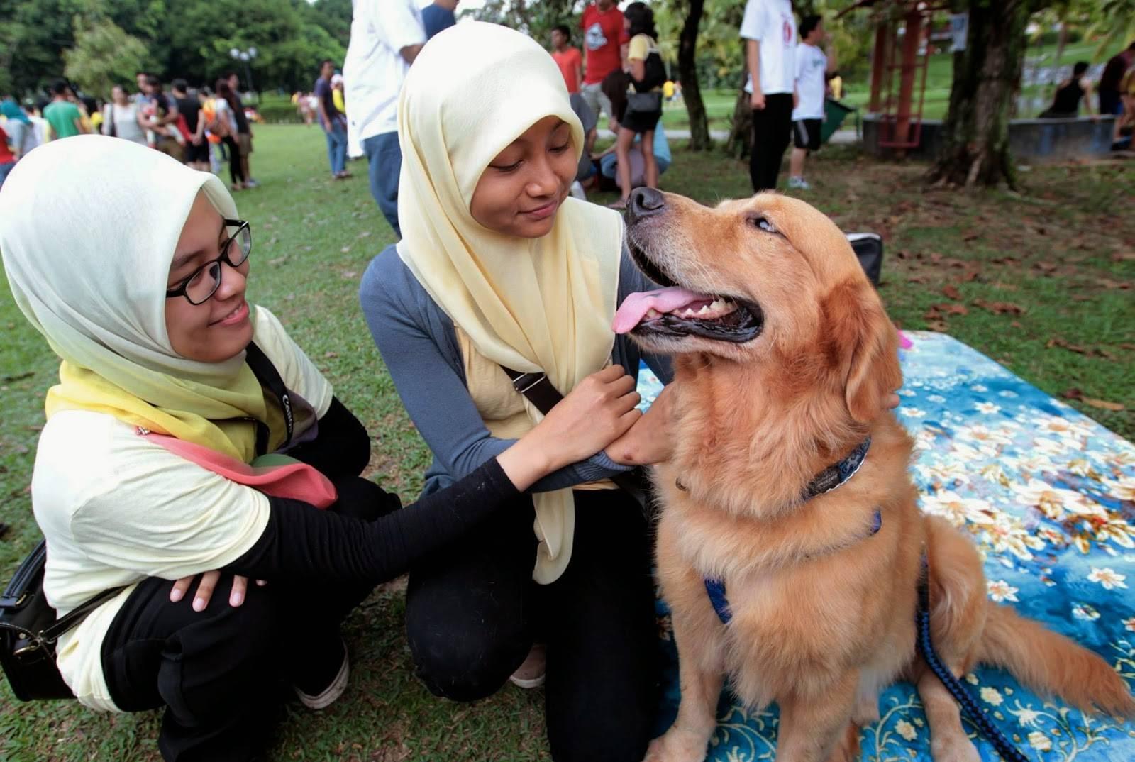 Друг человека в исламе: почему мусульманам нельзя держать собаку в доме