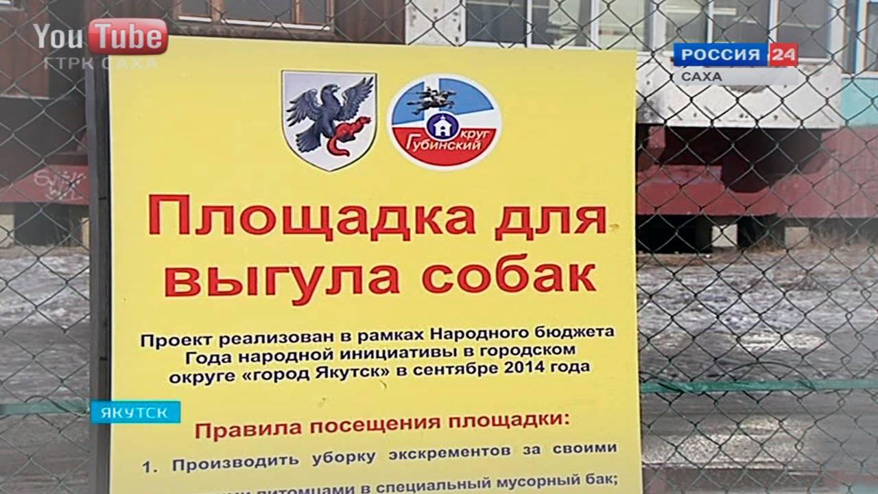 Закон о выгуле собак в российской федерации