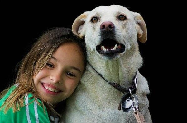 Собака часто высовывает язык и облизывается. собака постоянно облизывается