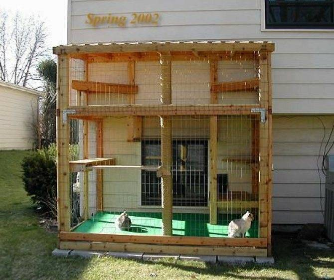 Созданы вольеры на окна для безопасной прогулки кошек - квартира