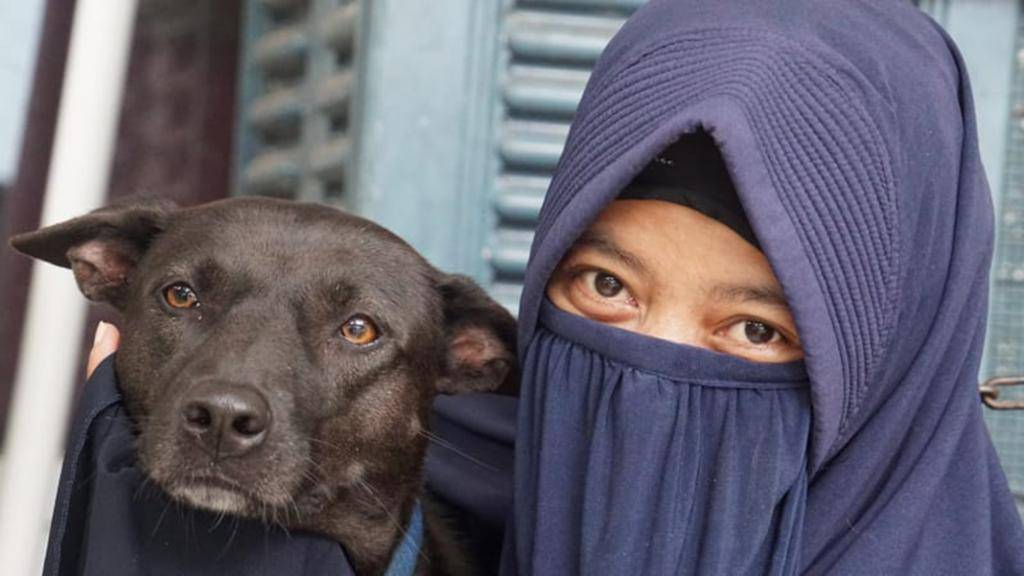 Эксперты рассказали, почему на одних людей собаки гавкают, а на других - нет