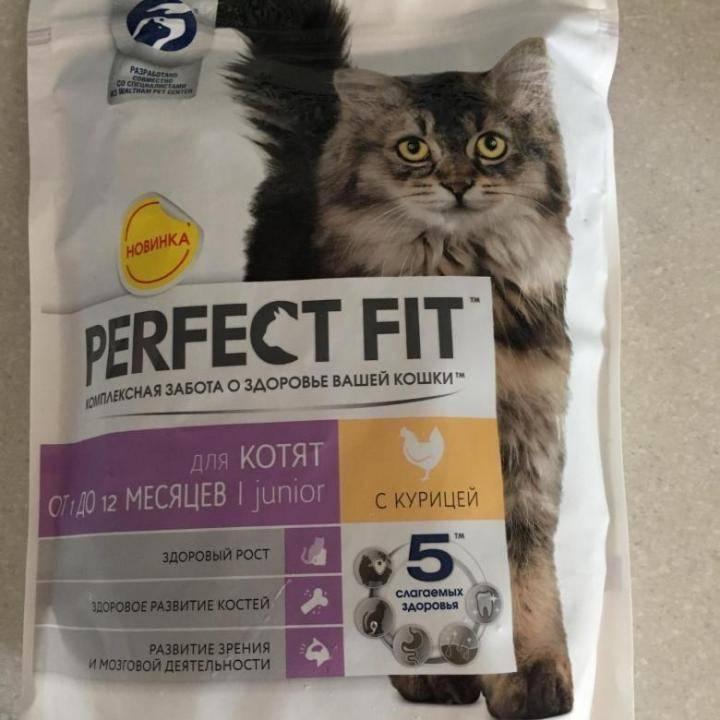 Корма для кошек perfect fit или корма для кошек sheba — какие лучше