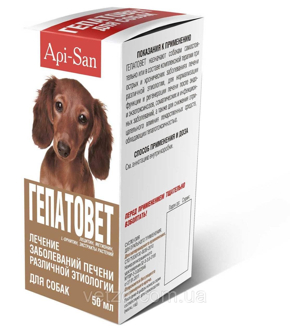Обзор препарата гепатовет для кошек: инструкция по применению, отзывы