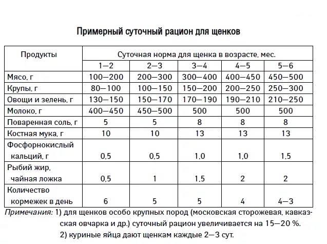 Нормы необходимого количества сухих кормов для собак в сутки: таблицы