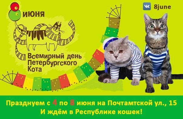 Когда день кошек в россии в 2021 году