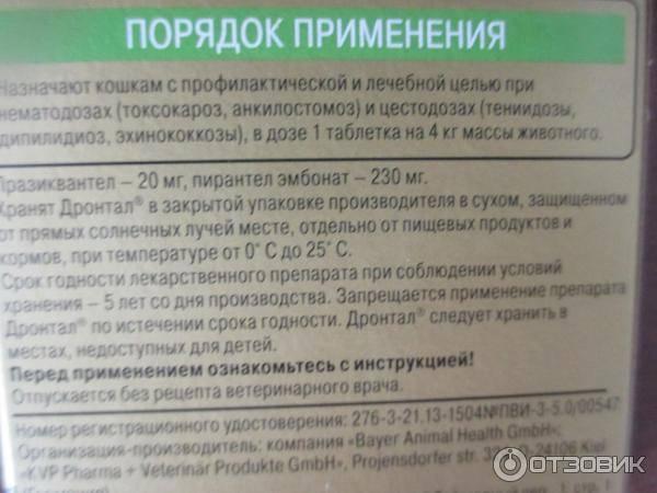 Дронтал: инструкция как избавить кошку от глистов — lapy-i-hvost.ru