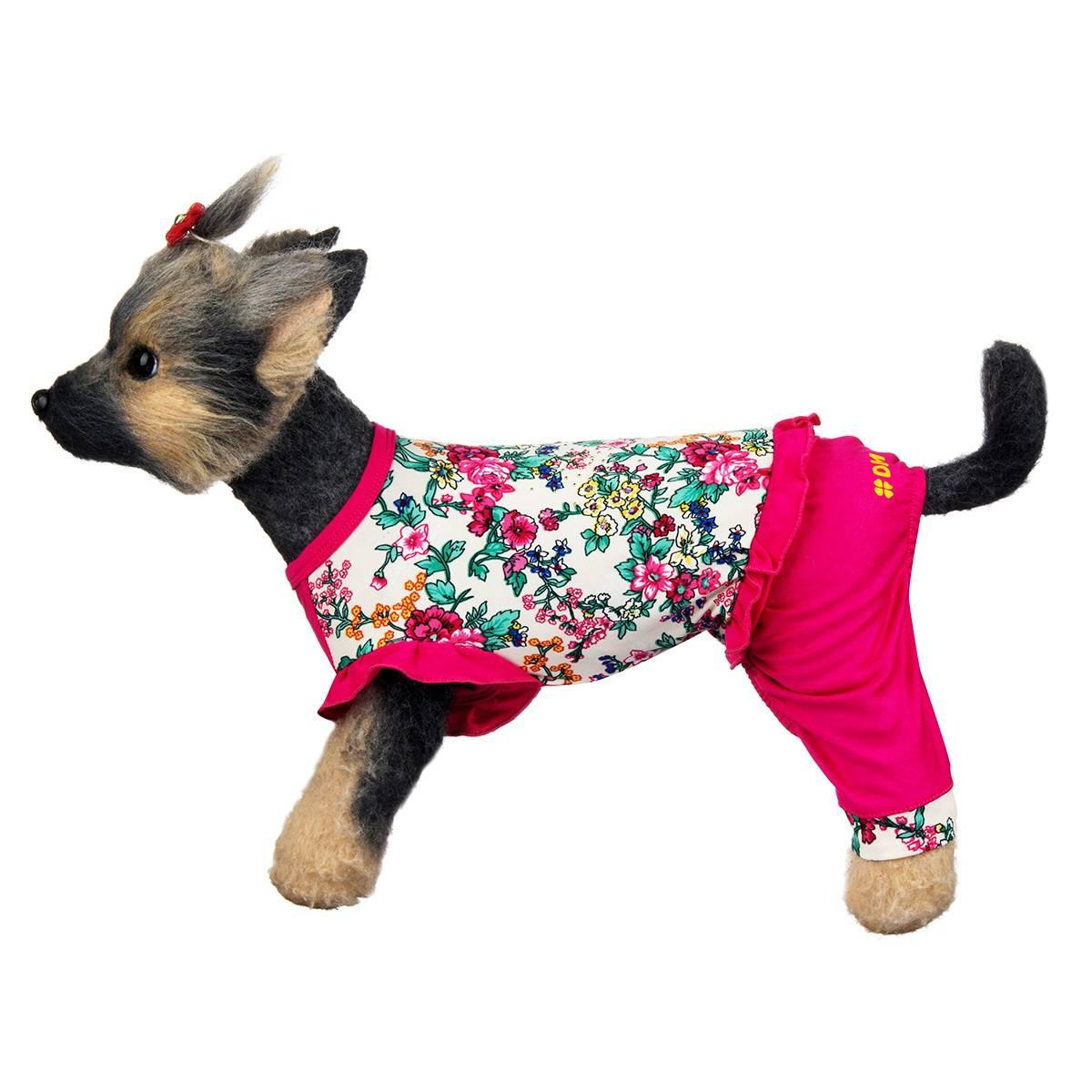 Какие есть виды одежды для собак и как ее правильно выбрать