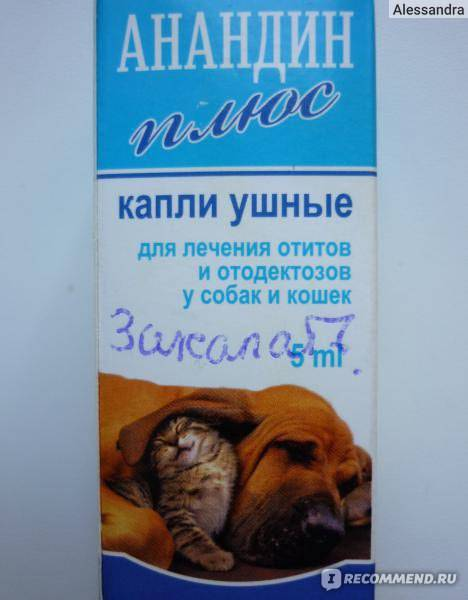 «анандин»: инструкция по применению интраназальных капель для инъекций собак и кошек. капли для носа и ушей.