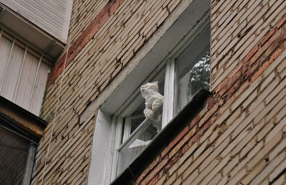 Падение со второго этажа. последствия? - вопрос детскому хирургу - 03 онлайн