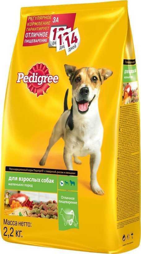 Какой корм для собак лучше: самые популярные марки, плюсы и минусы