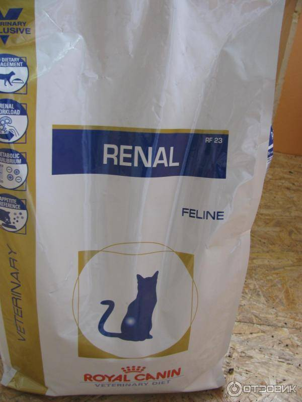 Все о корме для кошек royal canin renal : описание, фото- и видеообзор