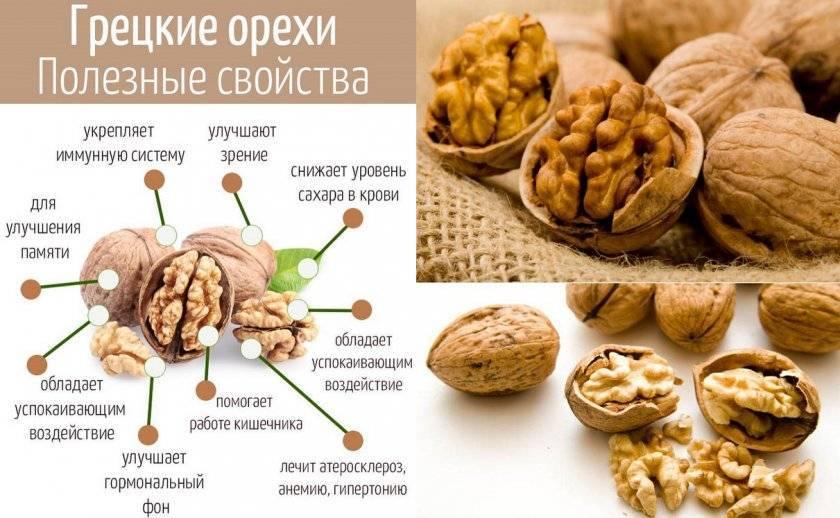 Что более полезно арахис или грецкий орех | польза и вред