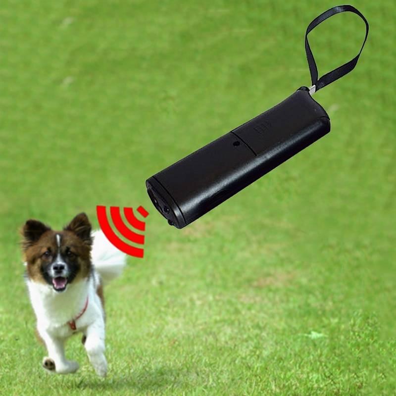 """""""антилай"""" для собак: отзывы и описание"""