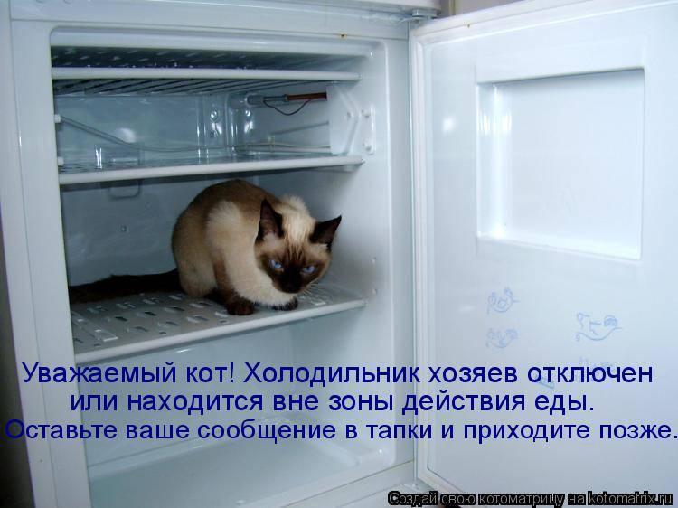 Правила входной двери: как запустить в дом удачу - домострой - info.sibnet.ru