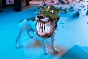 Джек-рассел терьер (фото) — жизнерадостная порода собаки из фильма «маска»