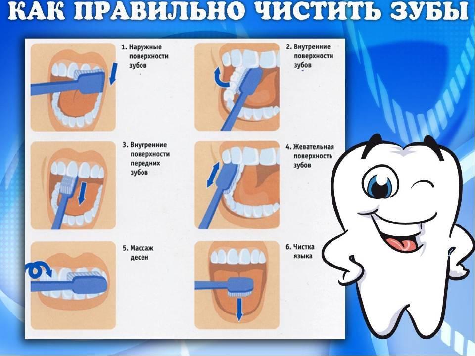 Как выбрать электрическую зубную щётку в 2020 году: рекомендации и отзывы стоматологов