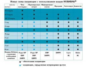 Прививки йорку: когда делается первая и какие делаются, полная таблица по возрасту