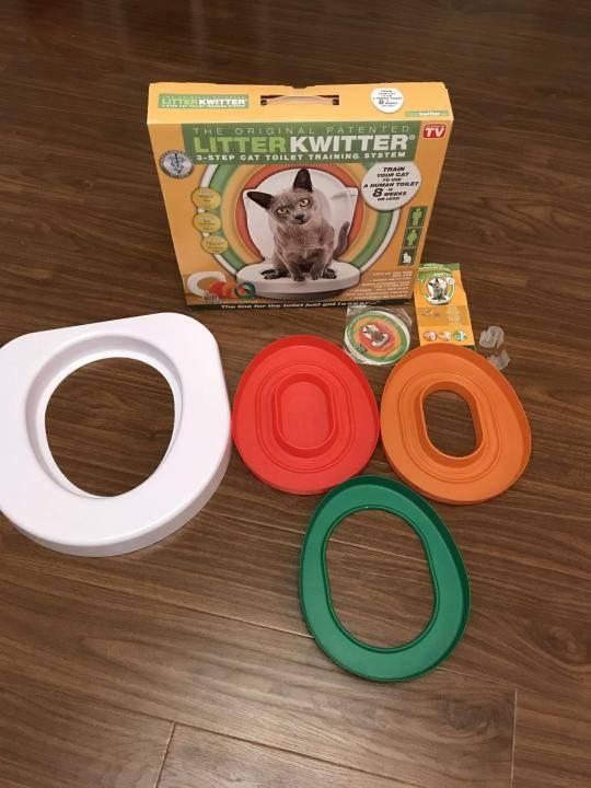 Как приучать кота к унитазу: зачем это нужно, советы и нюансы приучения после лотка