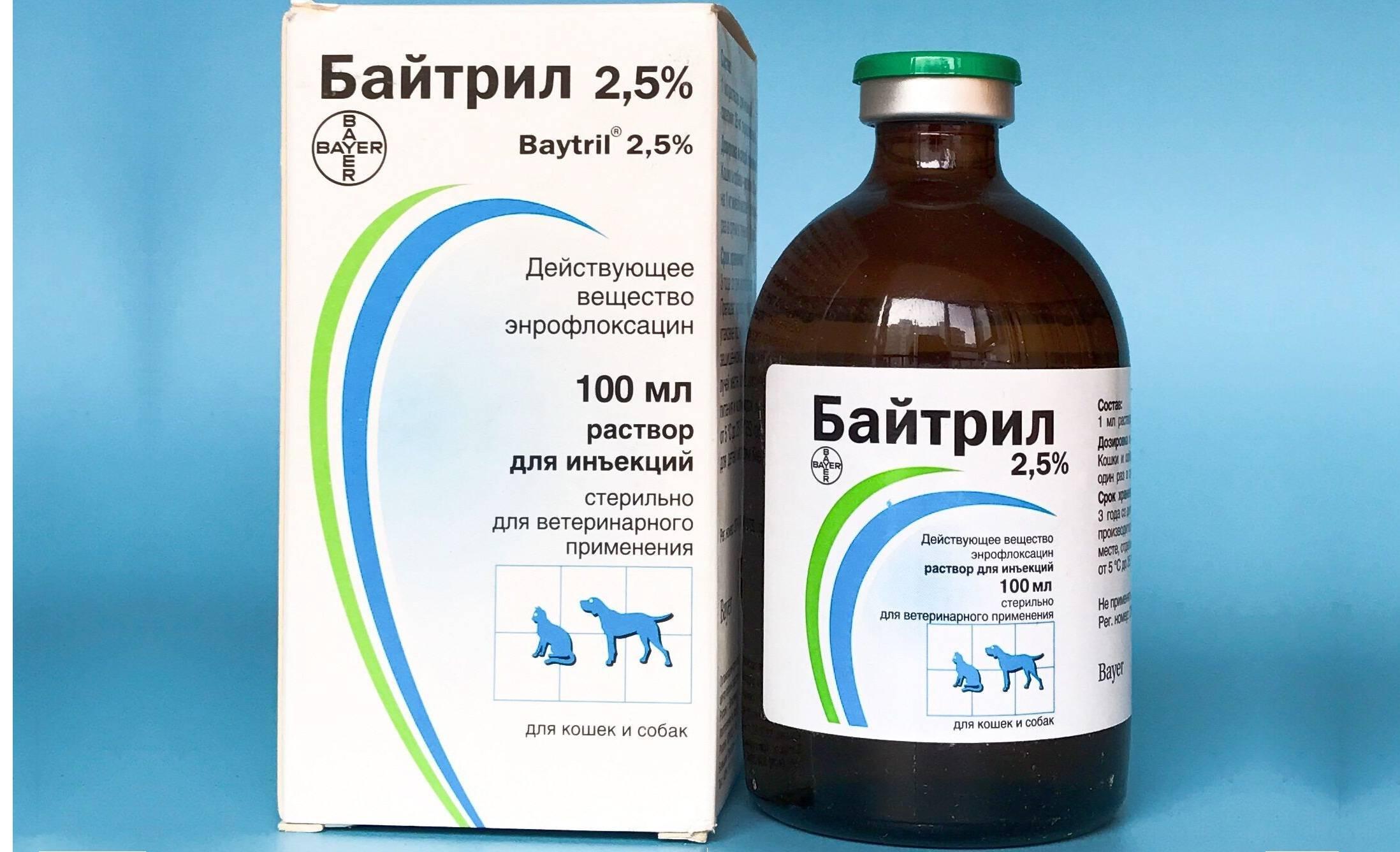 Байтрил для животных (baytril) | инструкция по применению байтрила в ветеринарии