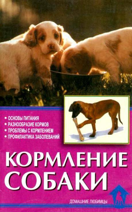 Кормление собак сухим кормом, как правильно и каковы нормы в день и дозировки по весу