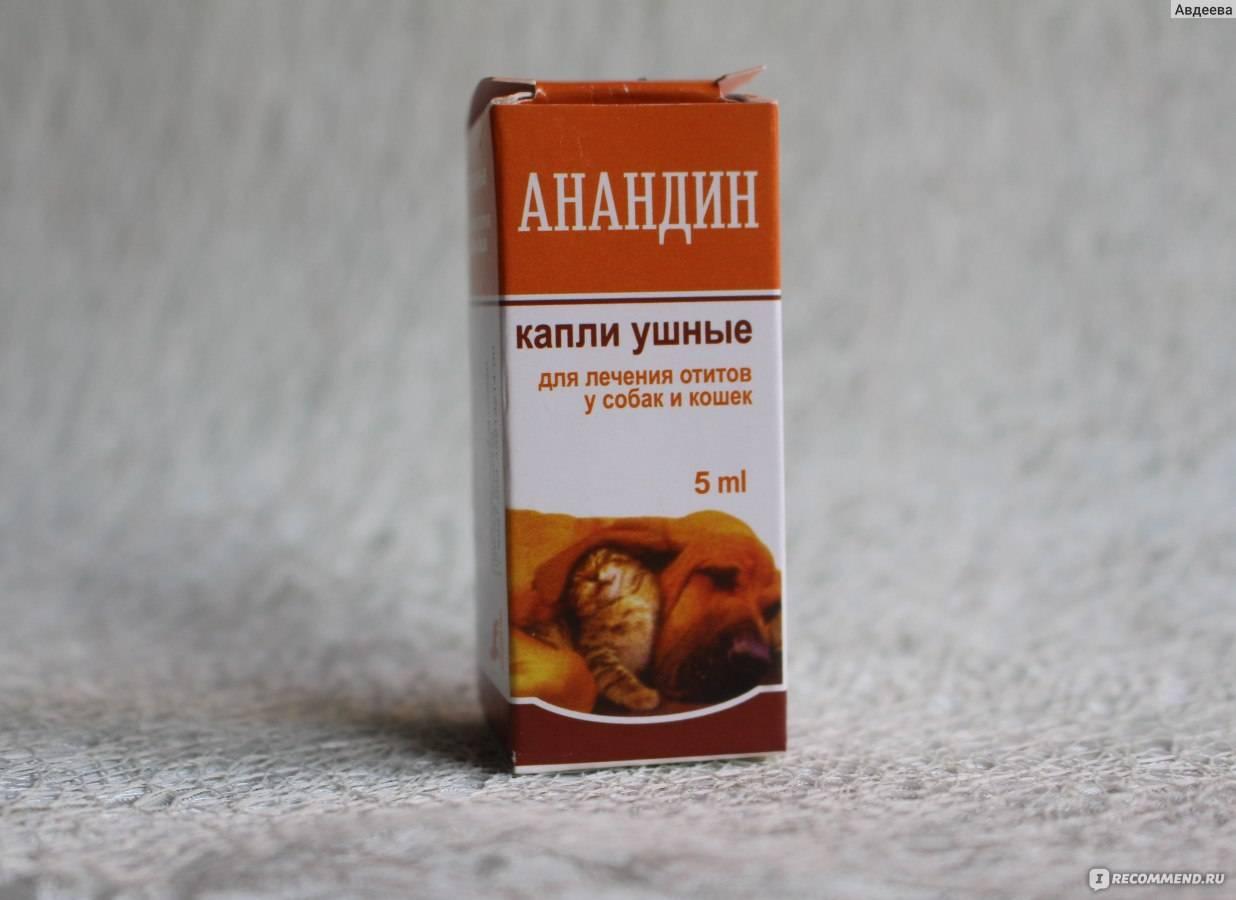 Инструкция по применению анандина для кошек: состав и показания к использованию глазных капель и инъекций