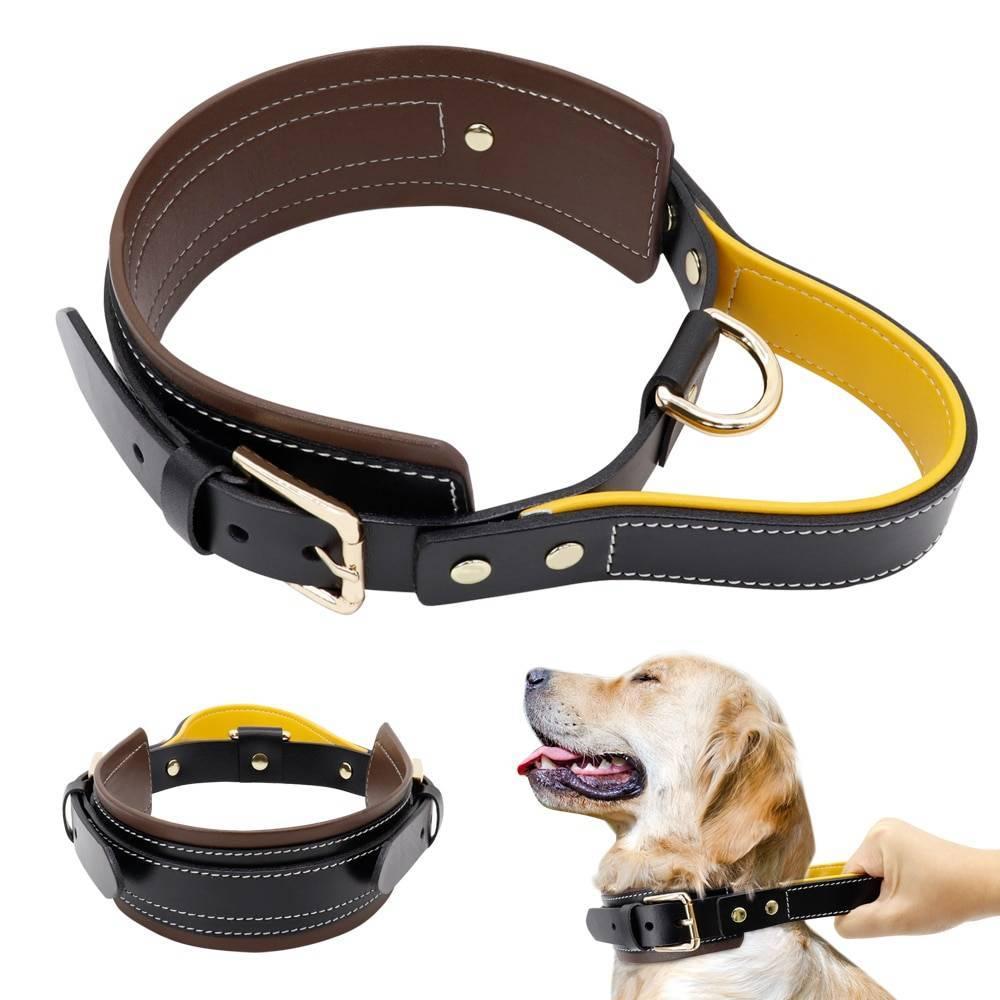 Лучшие электроошейники для собак