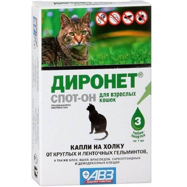 Диронет для кошек: инструкция по применению и отзывы
