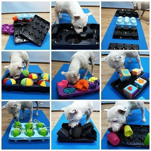 Как легко и просто сделать игрушку для любимой собаки или щенка своими руками