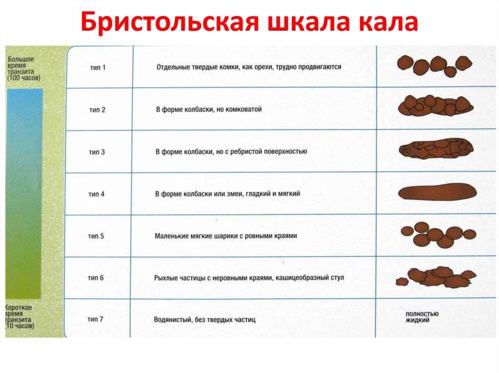 С чем может быть связано появление желтого или оранжевого кала у собак