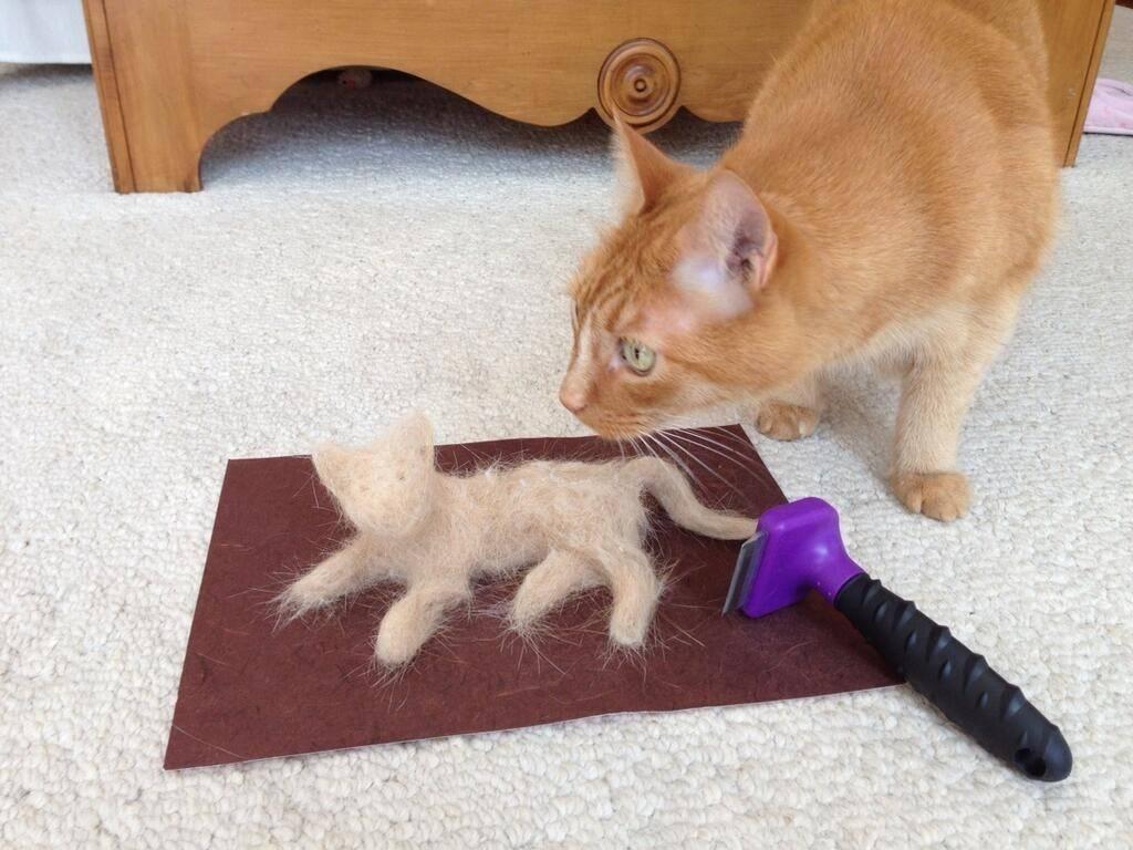 Почему кот линяет круглый год как лечить - муркин дом