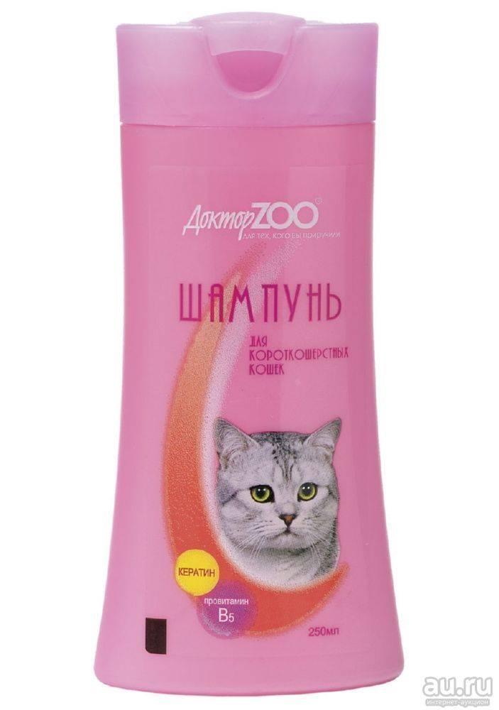 Шампунь для кошек: особенности выбора и использования, разновидности косметического продукта и отзывы владельцев животных
