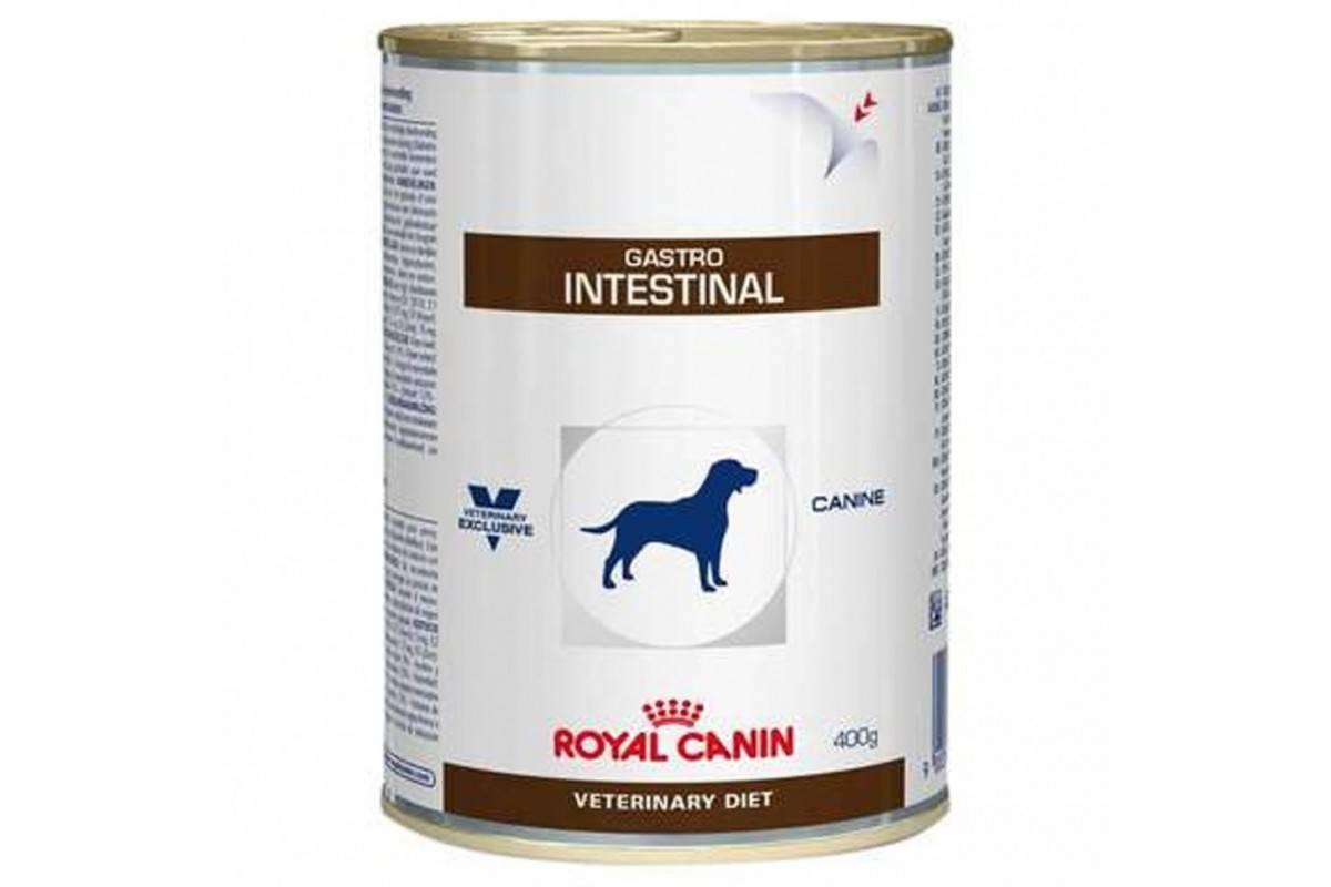 Роял канин гастро интестинал для собак противопоказания