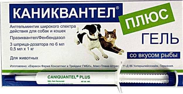 Обзор препарата каниквантел для кошек: инструкция по применению, отзывы