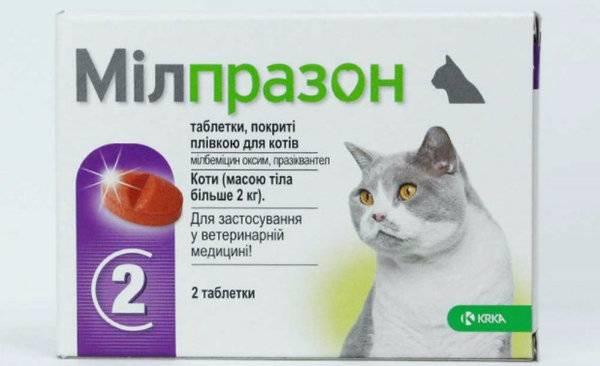 Милпразон — инструкция по применению для кошек и собак