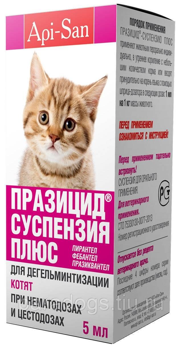 Каниквантел для кошек: инструкция по применению | цена, отзывы