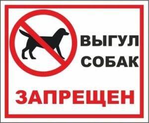Соседи выгуливают собак нагазоне удома: что делать?