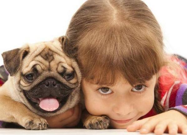 Советы как и какую породу собаки выбрать для детей — портал lapy-i-hvost.ru