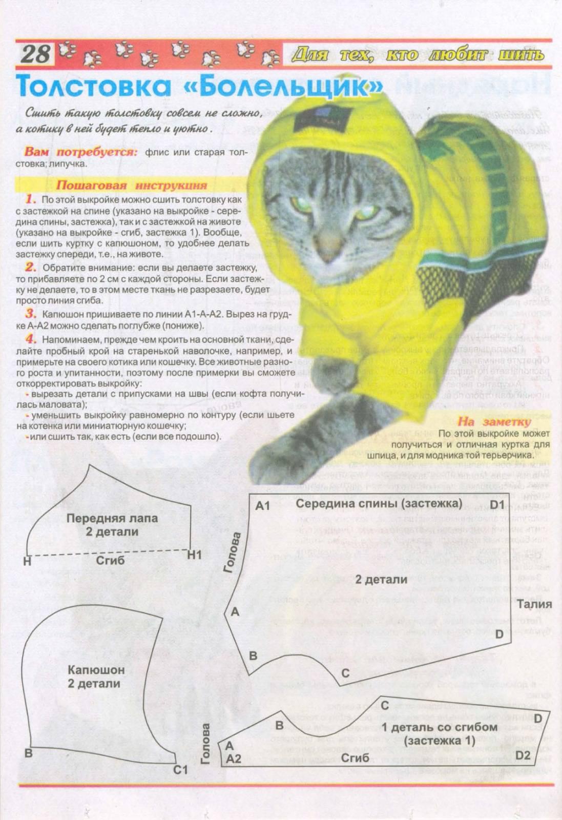 Как сделать ошейник для кошки своими руками | мастер-класс