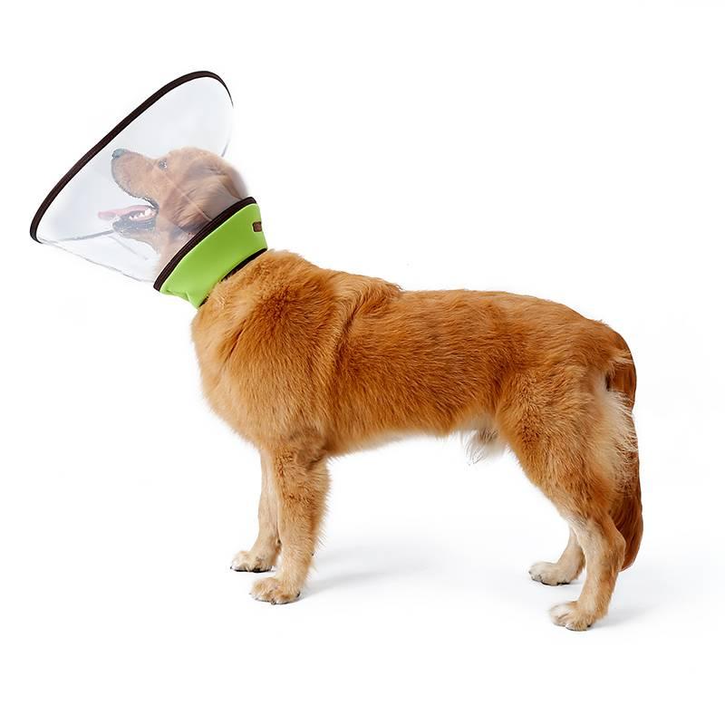 Воротники для собак: назначение, характеристики, размеры и рекомендации