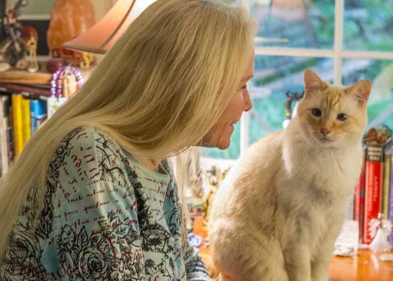 Научно доказано: кошки понимают человеческую речь