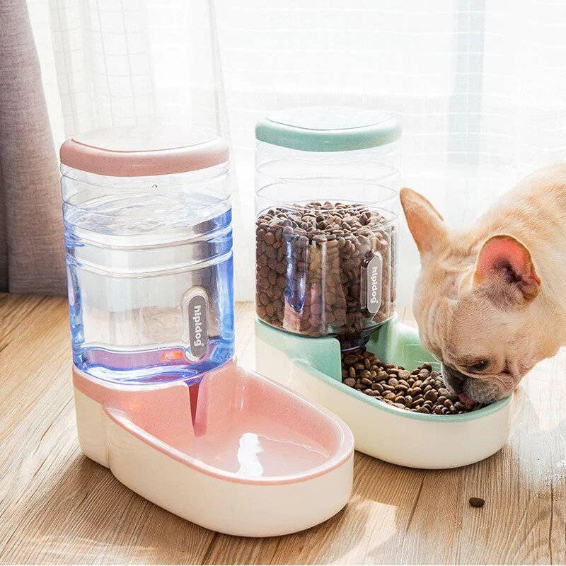 Атоматическая кормушка для кошек   настройка дозировки и советы по выбору аппарата (110 фото и видео)