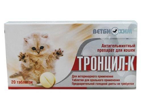 Таблетки от глистов для кошек: описание и характеристика популярных препаратов
