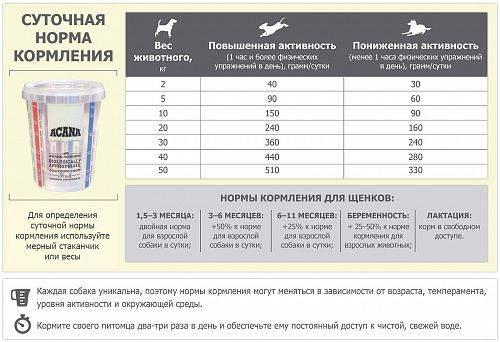 Как правильно кормить щенка сухим и натуральным кормом, а также график кормления по месяцам