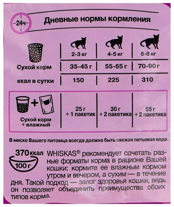 Можно ли кормить кошку сырым мясом: правила и стандарты кормления