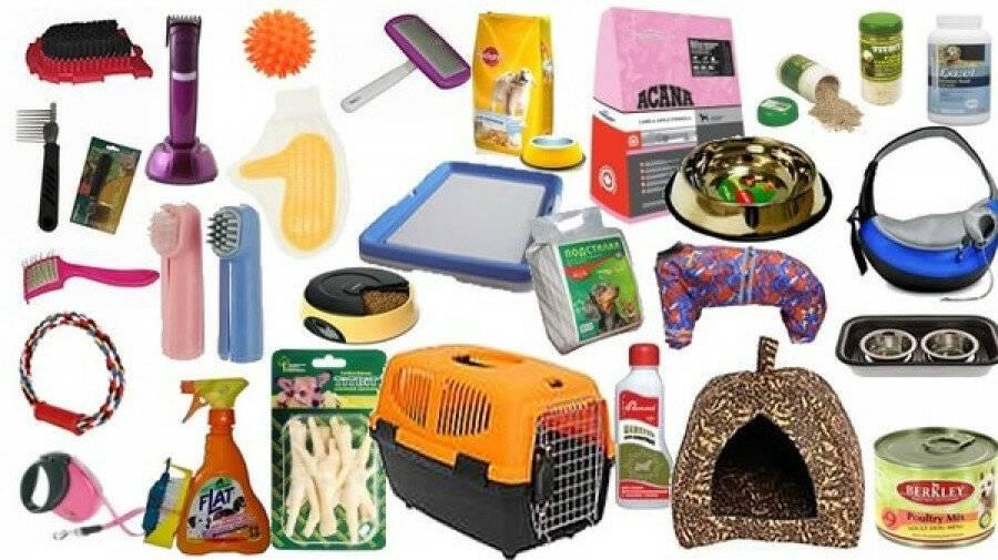 Стартовый набор: всё, что нужно купить перед появлением щенка в доме   нвп «астрафарм»