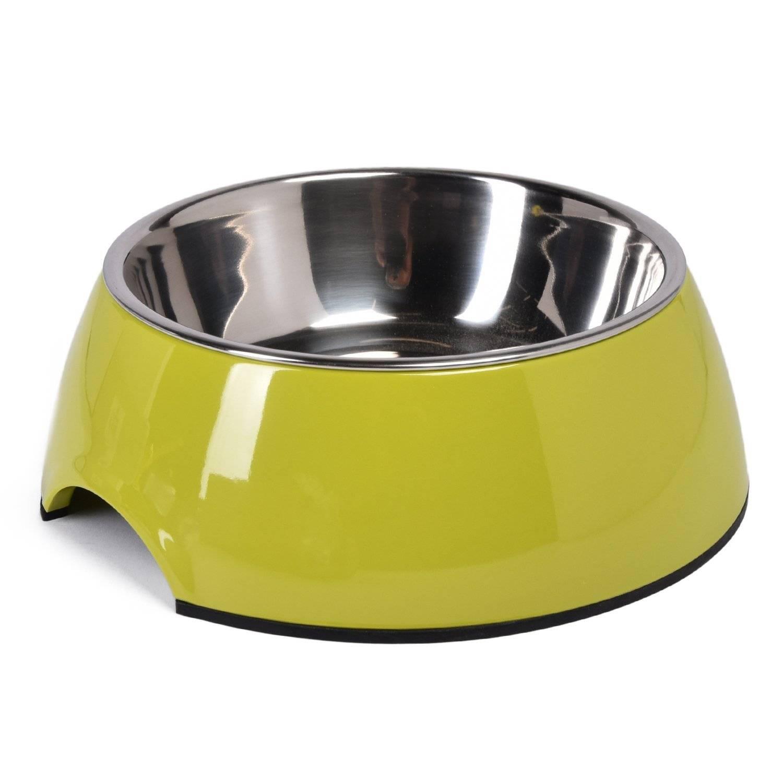 Особенности выбора миски для собак для вашего питомца